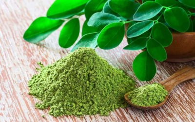 All You Need to Know About The Miraculous Moringa