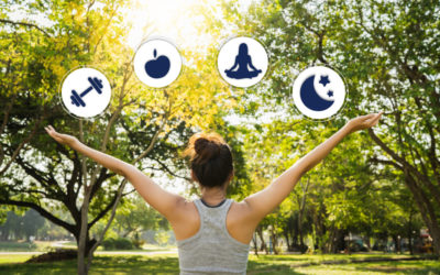 4 Branches of Wellness: Exercise, Nutrition, Relaxation and Sleep