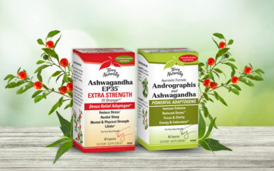 The Power of Adaptogenic Herbs: Ashwagandha and Andrographis